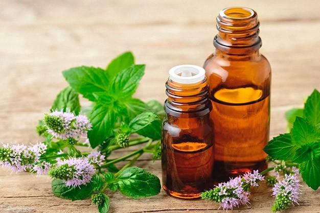 Aromas, Essências e Fragrâncias